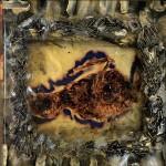 Hope on Dead Wings, 1997