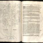 Fuchs, 1542
