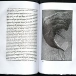 Moby Dick, 1979, the Whale