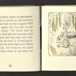 Claire Lawson-Hall, A Winter Garden, 2001, Squirrel