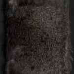 McAfee, Rodentia Abcedarium, 1998, Cover