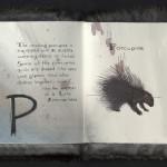 McAfee, Rodentia Abcedarium, 1998, Porcupine