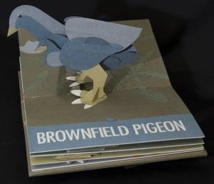 BrownfieldPigeon