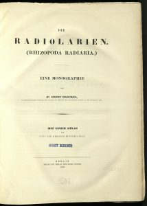 QL368-R2-H34-1862-title