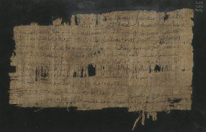 Papyrus338r