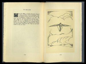Evolution of Flight - W Miller